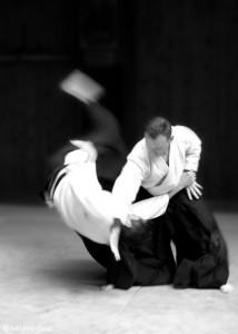 aikido_luc_mathevet_grenoble
