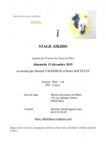 Stage_UDJ_13-12-2015