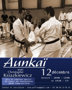 AUNKAI GRENOBLE DEC 2015