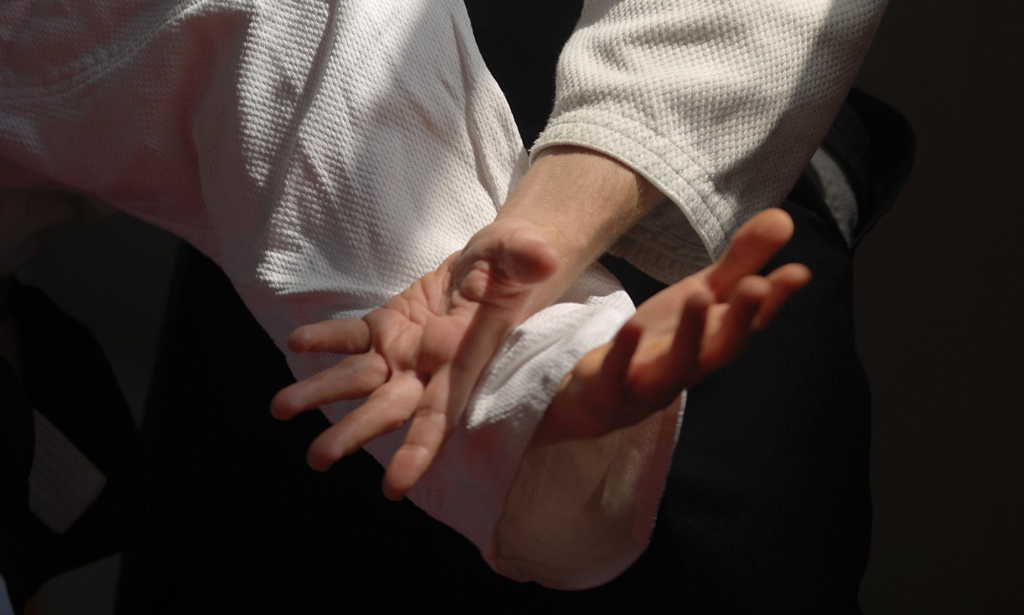 Grenoble Aïkido et Disciplines Associées